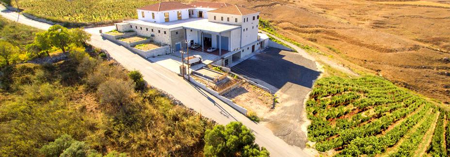 Кипр винный маршрут